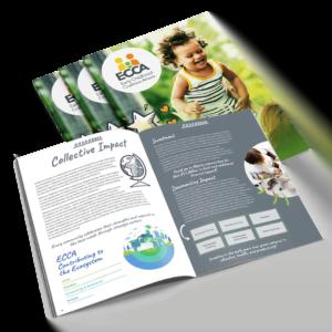 ECCA Annual Report 2019